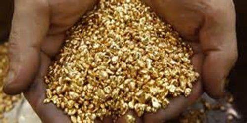 1/2 Gram of 10K Gold Super Refined Clean Cast Ready Solid Bullion shot Not Scrap