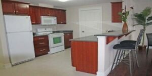Looking for Roomate in 2 bdrm Fairview apt