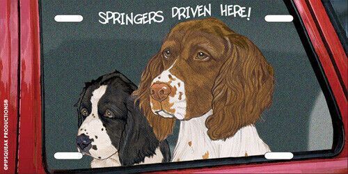 English Springer License Plate