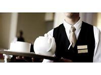 Experience Head Waiter | Work wanted Mon- Fri