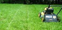 Lawn cut and trim LaSalle/Amherstburg