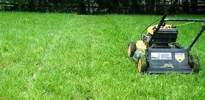 Nat's yard and property services ( since 1993) Wooloowin Brisbane North East Preview