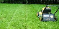 Lawn mowing and care services