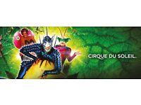 Cirque du Soleil: OVO, 15 September, 16:00, Nottingham