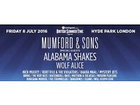 Mumford and sons BST Hyde park 8th July