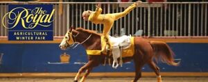 ROYAL WINTER FAIR TICKETS - BIG BEN & LONGINES - MANY AVAILABLE!