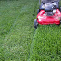 Affordable, professional, friendly lawn care service