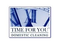 Domestic Cleaner £10-£11/hour