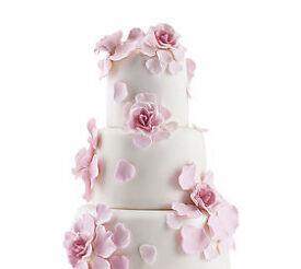 Wedding and stack cakes - Cake Decorating workshops
