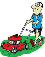 lawn care service and yard work