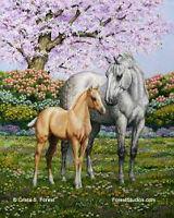 HORSE SALE AT STETTLER AUCTION MART