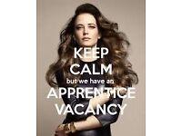 Hairdressing Apprenticeship @WickhamStudio