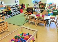 Full time licensed daycare 50/ day