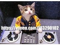 *FOR THE BEST RATES * * IMPRESSIVE LASER DISCO* - SEE VIDEO ( LINK ON CAT PHOTO) UK PARTY PEOPLE