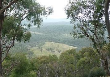40 Ha for $45,000 or 20 Ha for $25,000  Northern Tablelands NSW Lane Cove Lane Cove Area Preview