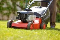 Need Lawn Care In Nanaimo? Huge Discounts For New Customers.