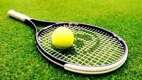 need a tennis partner