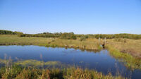 Land For Sale In Rural Athabasca County