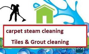 CARPET , TILES AND UPHOLSTERY STEAM CLEANING Wyndham Vale Wyndham Area Preview