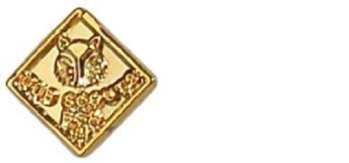Boy Scout Cub Scout Recognition Device Award Pin Official Licensed BSA Brand New