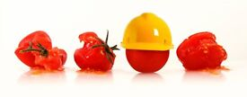 Level 2 Food Safety Training Course 30th June 2017 - Competitive Prices!