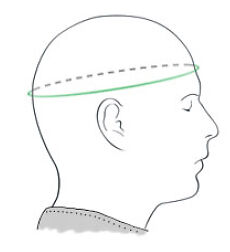 Measure above the ears and eyebrows