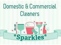 Sparkles Cleaning Team