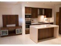 REDUCED. A beautiful statement corian kitchen island and units