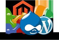 Web Site and Content Management System Design