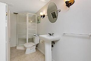 Entire Lower Floor Space with Private Bathroom and Great Privacy