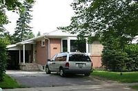 North York Basement!!!Great location for rent!!!