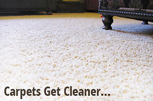 Carpet Cleaning 3 Rooms and a Hallway $ 99 Call or Text us
