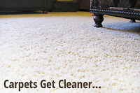 Carpet Cleaning 3 Rooms and a Hallway   $ 99 Call & Text