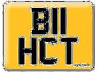 B11 HCT BI HOT BE HOT B!TCH Personal Cherished Registration Private number plate Harry Charlie Tom
