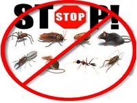 B.C. Pest Control ( same day service , 7 days a week ) WASPS. £25