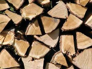 ASH, ELM & MAPLE - DRY, CUT & SPLIT - DELIVERY AVAILABLE