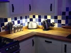 Brand New Kitchen Under Cabinet LED Strip Lights