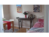 Double room for professional person available now