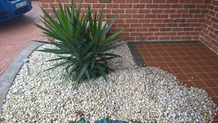 Approx 3 1/2 ton 20mm white cowra pebbles Rosemeadow Campbelltown Area Preview