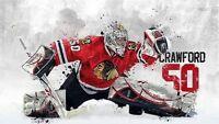 Recherche gardien but hockey glace / Looking for hockey goalie