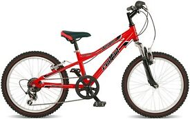 Dawes Redtail Childrens bike.