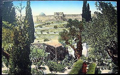 ISRAEL ~ 1914 JERUSALEM ~ Garden of Gethsemane