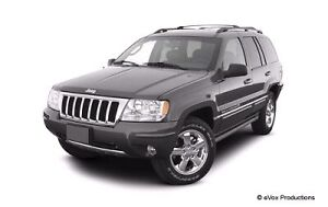 Looking for a Jeep! London Ontario image 4