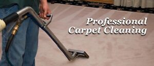 Carpet Cleaning &Pest Control Varsity Lakes Gold Coast South Preview