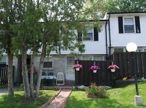 3 Bedrooms with Beautiful Backyard!