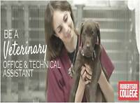 BECOME A VETERINARY OFFICE ASSISTANT