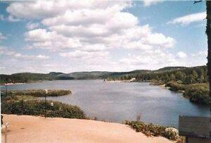 Chalet à vendre ZEC LA LIÈVRE secteur lac des Casques Lac-Saint-Jean Saguenay-Lac-Saint-Jean image 4