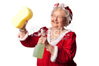 WHO HAS TIME FOR CLEANING AT THIS TIME OF YEAR!