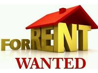 3bed wanted