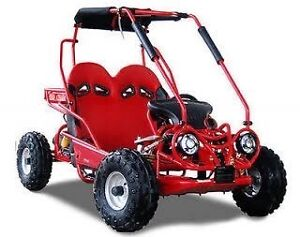 110cc dune buggy FREE DELIVERY!!!! Broadbeach Gold Coast City Preview